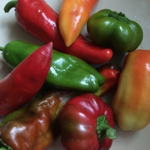 Paprika gelb 500 g Resch