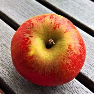 Apfel Renoir süß würzig Lindner