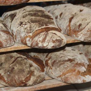 Brot Vollkorn