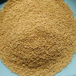 Queenoa (Quinoa aus Österreich)