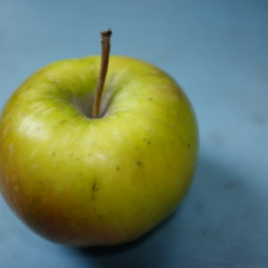 Apfel Arlet Weichhart