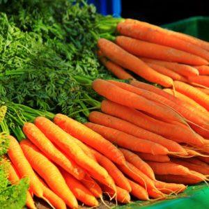 Karotten im Bund Holzer