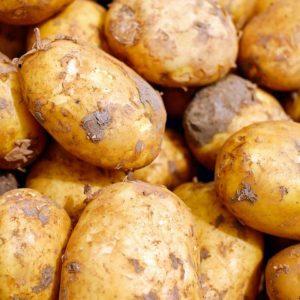 Erdäpfel Goldmarie (länglich, gelbfleischig) 2 kg gesackt