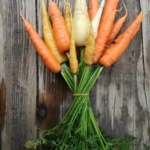 Karotten im Bund (ca. 500g) von Kulturgemüse