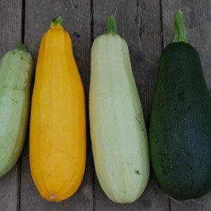 Zucchini bunt von Kulturgemüse 500g