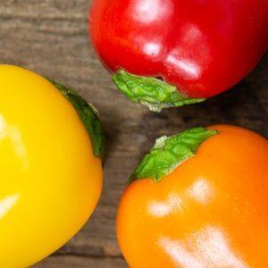 Snack Paprika bunt demeter