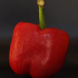 Paprika rot Holzer
