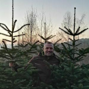 Bio Weihnachtsbaum 2-2,5m Lieferung 22.12.