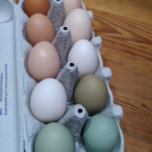 Eier naturbunt Lindner