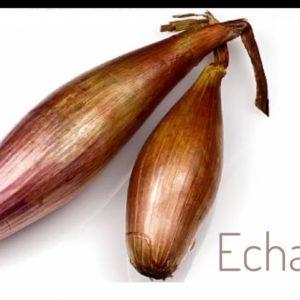 Bananenzwiebel gelb mild